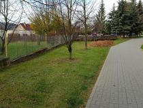 V městské zeleni probíhá sběr listí