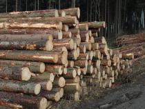 Výzva k podání návrhu na uzavření kupní smlouvy na 2 000 m3 dřevní hmoty, pro 2. čtvrtletí 2016.