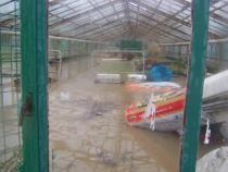 Ze skleníků se stal bazén.