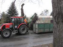Kácení a sadové úpravy na ulici Králova.