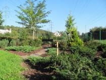 Výuková zahrada ZŠ Poličná