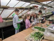 zahradnická pedagogika