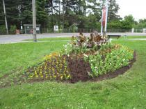 Probíhají výsadby květinových záhonů a mobilních nádob.