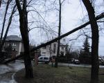 Následky silného větru